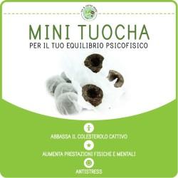 Mini Toucha