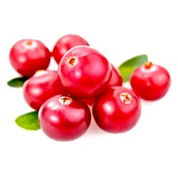 mirtilli rossi cranberries